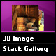 3D Image Stack Gallery
