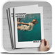 Simple Portofolio Brochure-Graphicriver中文最全的素材分享平台