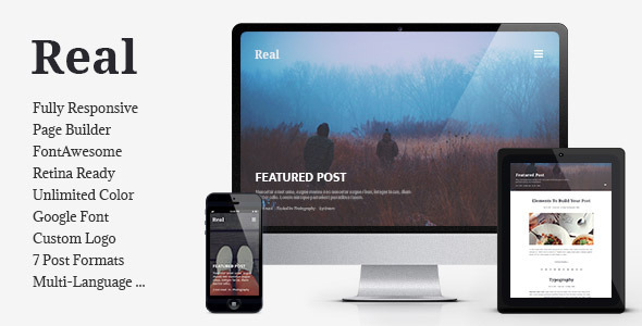 REAL - Responsive Blog WordPress Theme by bwsm | ThemeForest