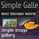 Simple Image Gallery - FlashDen Item for Sale
