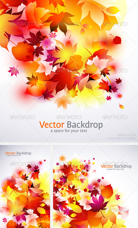 autumnal fallen falling flying leaves backgrounds vector