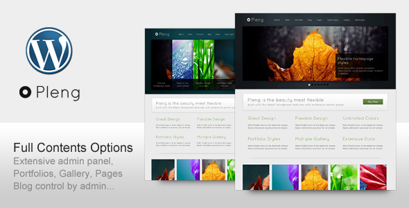 Pleng - Premium Theme for Corporate Business for Sale