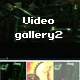 Dynamic flash video gallery 2