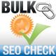 Bulk Check SEO Tools