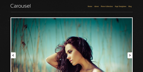 Carousel (Photography) WordPress theme for Sale