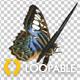 Fractal Art Collection - Titanium Tube - HD Loop - 176