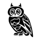 Owl tattoo in two variations