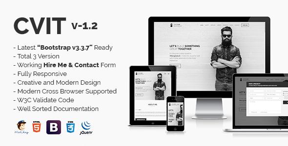 CVIT | Multipurpose Personal Portfolio / VCard / CV / Resume Template    Personal Site Templates
