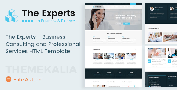 The experts business consulting and professional services html the experts business consulting and professional services html template business corporate wajeb Gallery