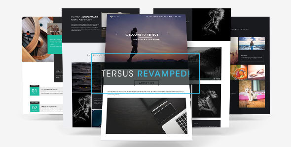 tersus business portfolio parallax muse template by soulmemoria