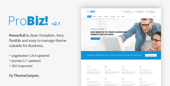 probiz creative multipurpose business template by themecanyon