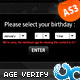 Age Verification Widget 01 AS3