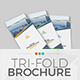 Trifold Brochure Template 1-Graphicriver中文最全的素材分享平台