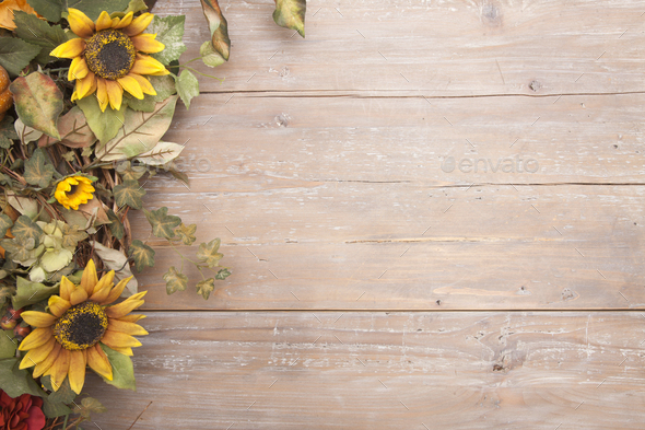Old Wood Background With Sunflower Border