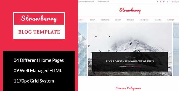 strawberry minimal blog html template by atix themeforest