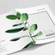 Creative Studio Brochure A4-Graphicriver中文最全的素材分享平台