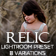Relic Lightroom Preset-Graphicriver中文最全的素材分享平台