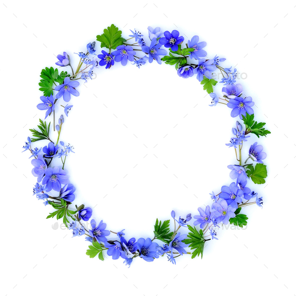 circle made of blue spring flowers on white background