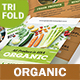 Organic Market Trifold Broc-Graphicriver中文最全的素材分享平台