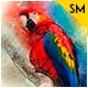 Professional Art Photoshop -Graphicriver中文最全的素材分享平台