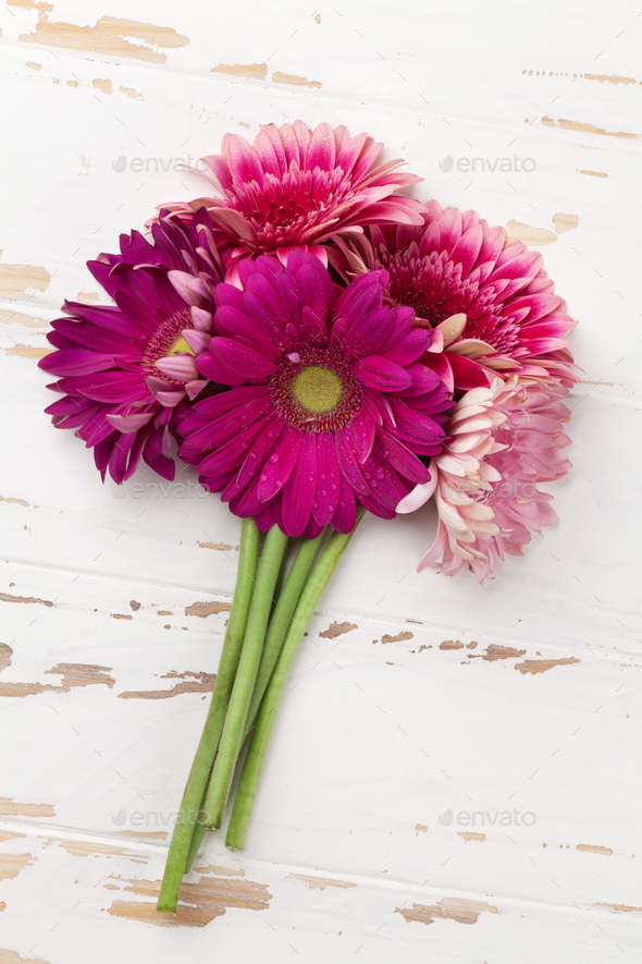 Gerbera flowers bouquet Stock Photo by karandaev | PhotoDune