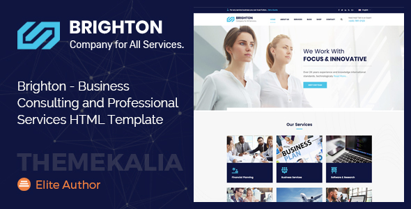 brighton business consulting and professional services html