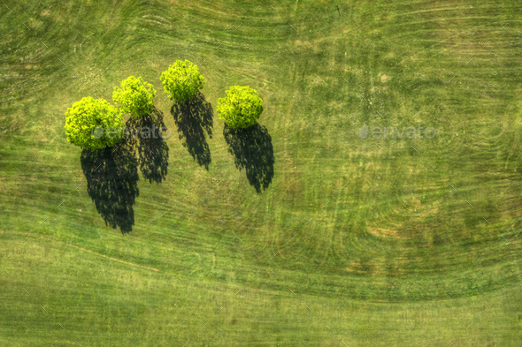 grass field from above. Grass Field From Above A