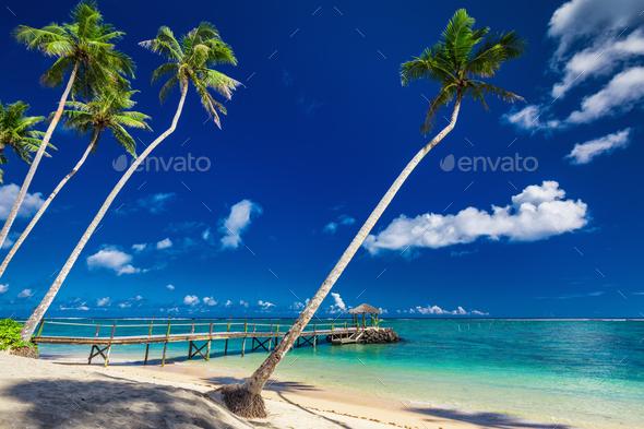 beach scene images