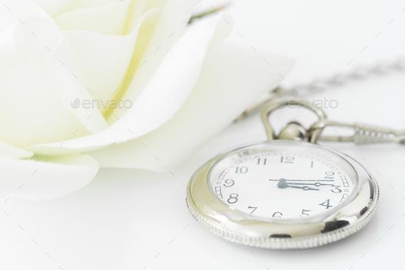 Wedding Rings On White Background 3 Stock Photo Images