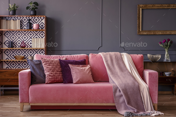 Cushions And Blankets On A Pink Velvet Sofa In A Luxurious Gray Stock Photo  By Bialasiewicz