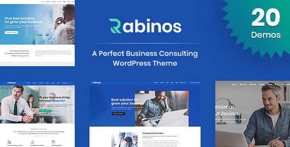 rabinos business consulting wordpress theme by themearc themeforest