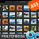 Portfolio Multi Media Tab Gallery with Admin AS3