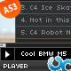 Minix Video Player with Playlist AS3