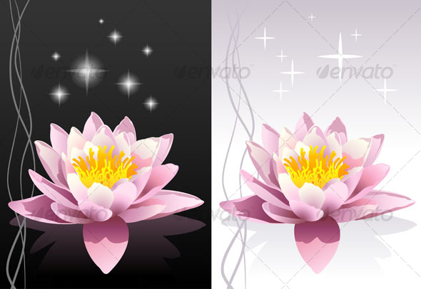 pink sacred indian lotus background