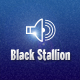 blackstallion