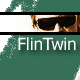 FlinTwin