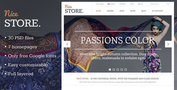 Nice Store - eCommerce PSD Template by MarekMnishek | ThemeForest