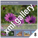 ADVANCED XML IMAGE GALLERY_v8