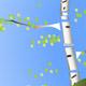 Trees Rotation