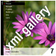 ADVANCED XML IMAGE GALLERY_v7