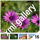 ADVANCED XML IMAGE GALLERY_v16
