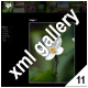 ADVANCED XML IMAGE GALLERY_v11