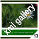 ADVANCED XML IMAGE GALLERY_v13