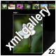 ADVANCED XML IMAGE GALLERY_v22