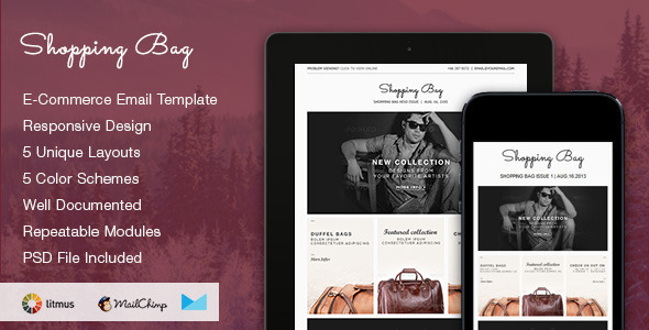 Shopping Bag Responsive Ecommerce Email Template By Smythemes - Ecommerce email templates free download