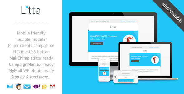Litta  Clean Responsive Newsletter Template By Saputrad  Themeforest