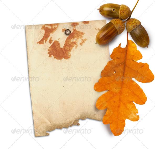 Дубовые листья из бумаги своими руками