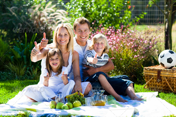 essay on picnic with my family