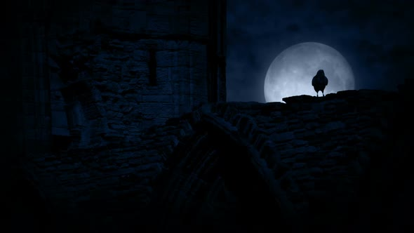 Crow On Old Castle Ruins At Night By RockfordMedia
