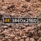 Soil - VideoHive Item for Sale